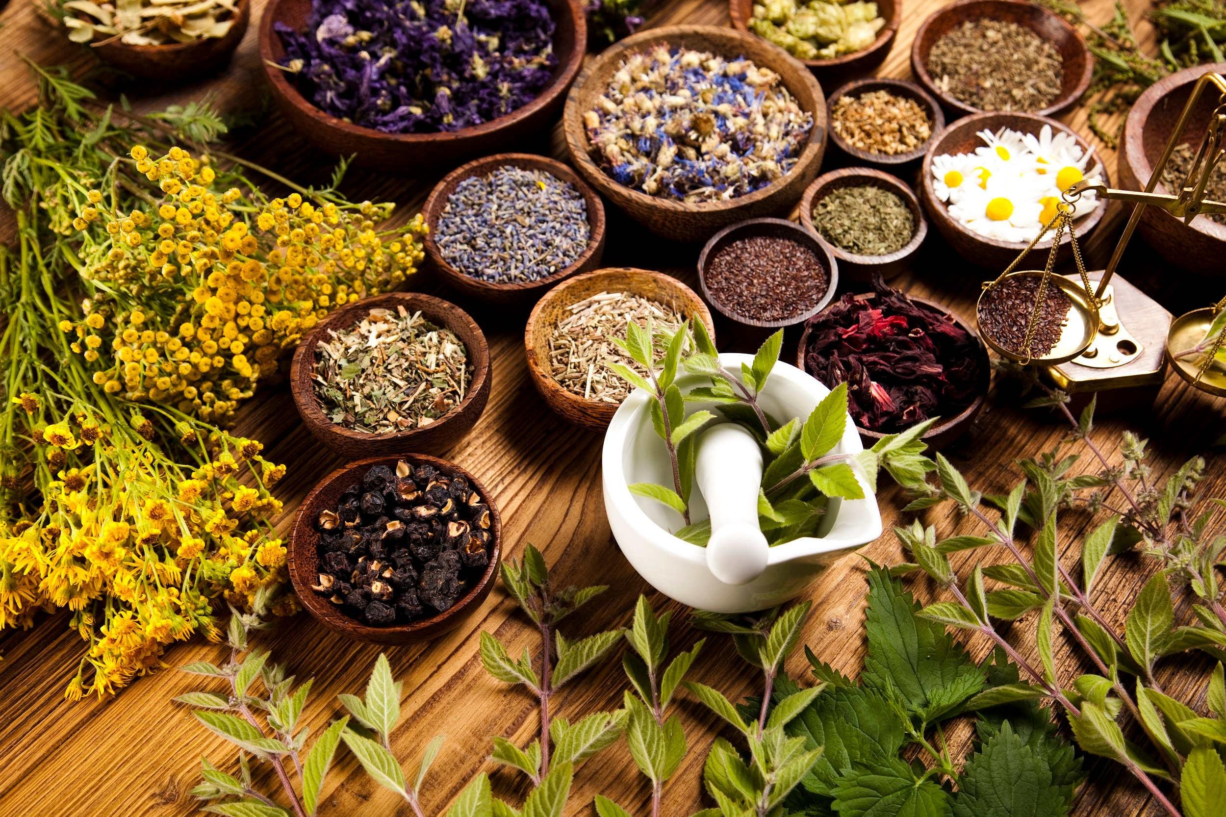 Se soigner par plante medicinale herboristerie belgique for Plantes belgique